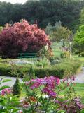 Rendez Vous aux Jardins 2018 -Promenade au coeur des jardins du Coq