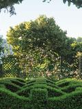 Rendez Vous aux Jardins 2018 -Promenade dans l'univers des supports de plantes grimpantes en acier.