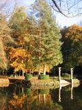 Journées du patrimoine 2016 -Promenade dans le parc du château du Bois Cornillé