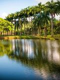 Rendez Vous aux Jardins 2018 -Balade dans les jardins de l'Habitation Clément