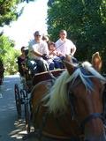Journées du patrimoine 2016 -Promenade en calèche pour la Fête de la Saint-Omer