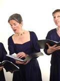 Journées du patrimoine 2016 -Promenade musicale : vieilles chansons de France, chansons à manger et à boire