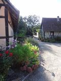 Rendez Vous aux Jardins 2018 -Rendez-vous à l'écomusée d'Alsace, à la découverte d'un patrimoine naturel Européen.