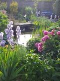 Rendez Vous aux Jardins 2018 -Visite commenté du jardin Le Clos d'Eli