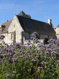 Rendez Vous aux Jardins 2018 -Visite libre et commentée du jardin du Manoir du Plessis au Bois