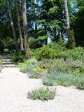 Rendez Vous aux Jardins 2018 -Visite du jardin des Pins noirs