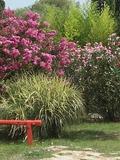 Rendez Vous aux Jardins 2018 -Découverte de la bambouseraie