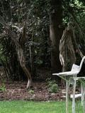Rendez Vous aux Jardins 2018 -Visite guidée et exposition au Jardin du Séquoia