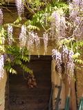 Journées du patrimoine 2016 -Restaurer nos maisons en pisé, c'est désormais préserver un patrimoine de l'Unesco