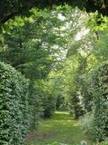 Rendez Vous aux Jardins 2018 -