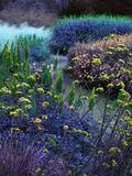 Rendez Vous aux Jardins 2018 -Chemins du bleu au Jardin des arts