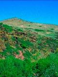 Journées du patrimoine 2016 -Sortie nature à la découverte du Puy de Wolf