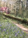 Journées du patrimoine 2016 -Sorties nature en Flandre Intérieure
