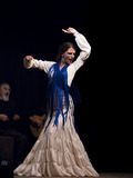 Nuit des musées 2018 -Spectacle de Flamenco par l'association A plena Luz Danse