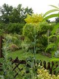Rendez Vous aux Jardins 2018 -Surprises visuelles et auditives au jardin de la Plage Verte