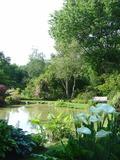 Rendez Vous aux Jardins 2018 -Un jardin à l'anglaise, au pays de Chateaubriand