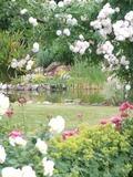 Rendez Vous aux Jardins 2018 -Un jardin en harmonie au sein d'une communauté religieuse