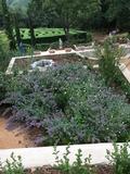 Rendez Vous aux Jardins 2018 -Un nouveau jardin aux Jardins de Quercy : le jardin des Terrasses Andalouses