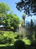 Rendez Vous aux Jardins 2018 -Un voyageur immobile, Jean Giono entre jardins et lieux d'écriture