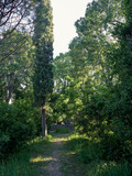Journées du patrimoine 2016 -Jardin de la reine - jardin des plantes