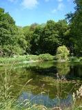 Rendez Vous aux Jardins 2018 -Une des plus grandes collections françaises d'arbres et arbustes - Les Arbres du Monde au Huelgoat