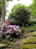 Rendez Vous aux Jardins 2018 -Une promenade associant minéral, végétal, couleurs, formes, senteurs dans le respect du cadre naturel.