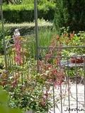 Rendez Vous aux Jardins 2018 -Venez découvrir le jardin de Maëlys