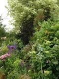Rendez Vous aux Jardins 2018 -Venez découvrir un jardin de vivaces!