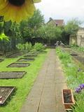 Rendez Vous aux Jardins 2018 -Visite du jardin d'Hugo