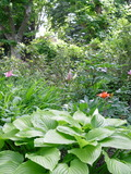 Rendez Vous aux Jardins 2018 -Visite  du Bayle vert