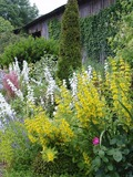 Rendez Vous aux Jardins 2018 -Visite d'un jardin aux accents romantiques.
