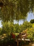 Rendez Vous aux Jardins 2018 -Visite commentée accompagnée d'une jardinière