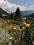 Rendez Vous aux Jardins 2018 -Visite commentée du Jardin botanique alpin Flore-Alpe