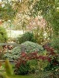 Rendez Vous aux Jardins 2018 -Visite guidée du jardin de la Bosquerie