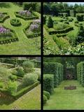 Rendez Vous aux Jardins 2018 -Visite commentée du Jardin Les Langottières