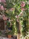 Journées du patrimoine 2016 -Visite commentée du village