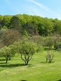 Rendez Vous aux Jardins 2018 -Visite commentée exceptionnelle d'un parc d'une abbaye datée du XVIIIe siècle.