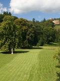Rendez Vous aux Jardins 2018 -Visite libre ou commentée par les propriétaires du Parc du manoir de Kintzheim