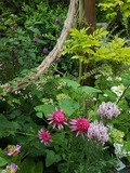 Rendez Vous aux Jardins 2018 -Visite commentée du jardin de Maëlys réservée aux écoles