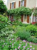 Rendez Vous aux Jardins 2018 -Visite commentée par le propriétaire