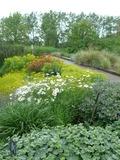 Rendez Vous aux Jardins 2018 -Visite contée ''L'Europe des jardins''