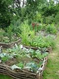 Rendez Vous aux Jardins 2018 -Visite d'un jardin d'inspiration médiévale
