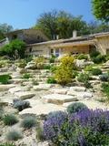 Rendez Vous aux Jardins 2018 -Visite commentée d'un jardin de la biodiversité.