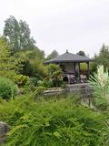 Rendez Vous aux Jardins 2018 -Visite d'un jardin exotique et japonisant