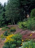 Rendez Vous aux Jardins 2018 -Visite libre du jardin et visite commentée du jardin d'hiver