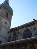 Journées du patrimoine 2016 -Visite de chantier de la restauration de la toiture de la collégiale Notre-dame-des-Oliviers
