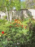 Rendez Vous aux Jardins 2018 -Visite de jardin