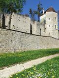 Journées du patrimoine 2016 -Visite de l'ancien château des ducs de Bourgogne