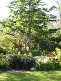 Rendez Vous aux Jardins 2018 -Visite libre ou commentée du jardin l'Atelier