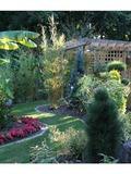 Rendez Vous aux Jardins 2018 -Visite découverte d'un jardin botannique